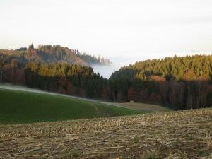 Herbst im Emmenthal