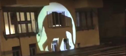 Der Elefant unterwegs in Bern, Lichtprojekt von Michel Flückiger, 2015 ( Video-Ausschnitt)